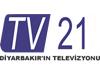TV 21 canlı izle